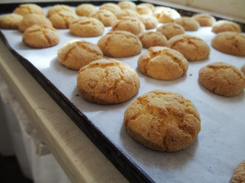 Harscha Moroccan Cookies