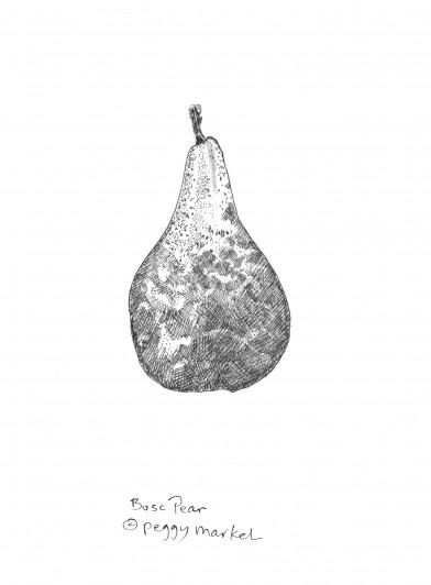 Pear by Peggy Markel