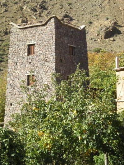 Atlas Mountains Morocco Birding Article