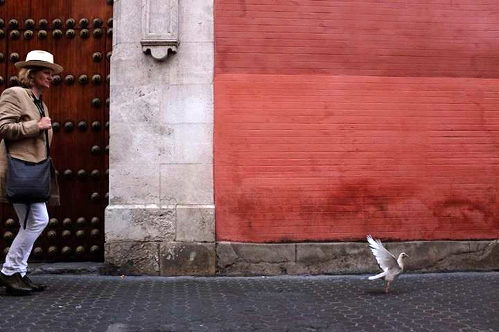peggy bird seville