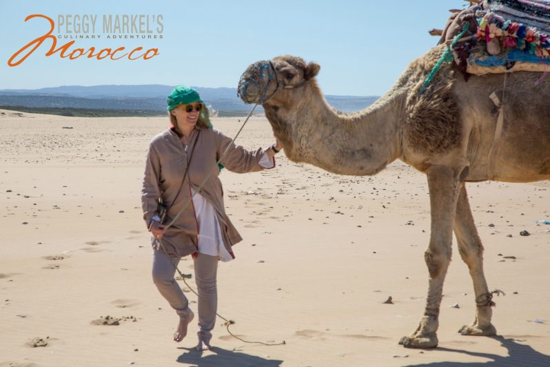 peggy-with-camel-smaller-morocco-logo