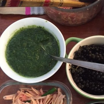 Coriander Cilantro Chutney India Culinary Adventure