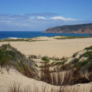 Portugal - Peggy Markel's Culinary Adventures