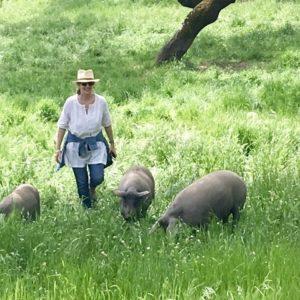 peggy with pigs